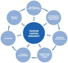 The Ultimate Definition Of Human Capital  Business Help And