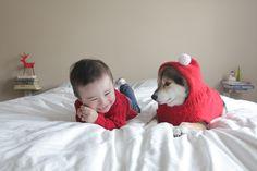 CUTE ALERT! Shiba Inu 'Maru' and Baby Boy Issa Are BFFs