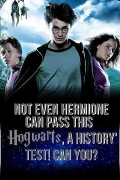 Quiz: Not Even Hermione Can Pass This 'Hogwarts, A History' Test! Can You? - Women.com