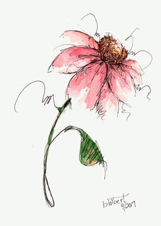 Cone Flower Original Watercolor Art Painting Red Pen and Ink