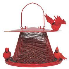 Sweet Corn Products Llc Cardinal Caged Bird Feeder & Reviews   Wayfair
