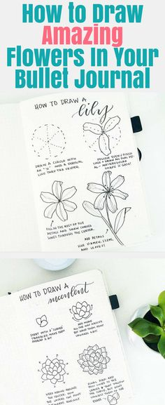 Easy, step by step flower doodles you can design in your bullet journal. Learn how to make beautiful bullet journal spreads and layouts with these simple and whimsical planner doodles and floral designs. Hand-drawn floral decorations that anybody can learn easily. #bulletjournal #plannerdoodles Bullet Journal Spreads, Bullet Journal Monthly Spread, Bullet Journal Hacks, Bullet Journal How To Start A, Bullet Journal Themes, Bullet Journal Layout, Bullet Journals, Art Journals, Los Dreamcatchers