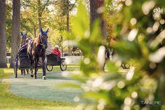 Hippodrome, Oise, Images, Golf Courses, Beginning Sounds, Tourism