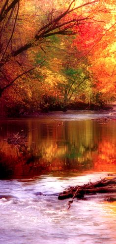 *FALL ~ Autumn stream - This is when I love living in the South the most.