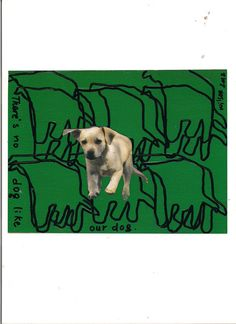"""""""There is no Dog like our Dog"""" Pets Mail Art Project   (USA) by Wilson Antonio (Brasil)"""