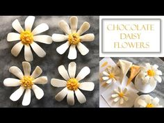 How to Make Chocolate Daisy Flowers | Two Design Concepts - YouTube