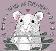 Defend Animals · PETA-Approved Vegan T-Shirts & Cruelty-Free Clothing for animal rights activists 🐾 The Animals, Vegan Animals, Stop Animal Testing, Stop Animal Cruelty, Animal Testing Quotes, Rata Dumbo, Vegan Art, Vegan Quotes, Vegan Memes