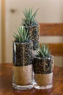 Fill bottom half of glass container with rice, the top half with dark rocks, and plant a simple succulent at the top. Great centerpiece!