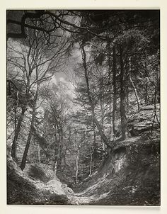 [Footpath in the Seven Mountains, Germany]  August Sander (German, 1876–1964)