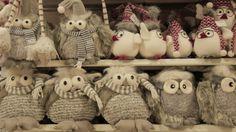 Teddy Bear, Christmas Ornaments, Holiday Decor, Animals, Gardens, Pottery, Accessories, Animais, Animales