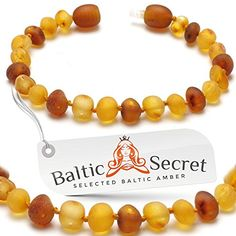 Baltic Secret NEW Amber Bracelet Anklet 8Sp081i07v