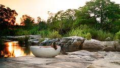 Ridiculously amazing bath!!! #bucketlist Londolozi, South Africa.