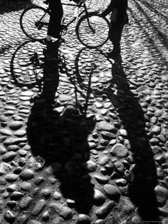 Shadows Cast on Cobblestone Street in Early Morning on Nantucket