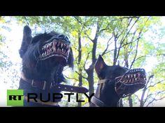Werewolf Dog Muzzle | DudeIWantThat.com