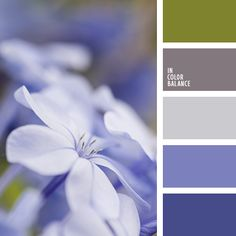 Delicate and at the same time expressive palette that few people indifferent. Shades of purple effectively playing with green and pastel brown. The perfect color solution for a modern and stylish interior, which is likely to appeal to active, cheerful people. This combination of tender and bright colors can be used for decoration of the wedding hall.