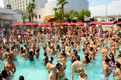Who doesn't like to start their weekend early with Ditch Fridays at Palms Pool?