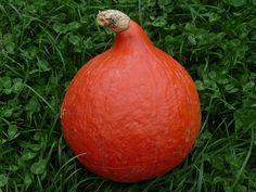 Dýně Onion, Pear, Vegetables, Fruit, Food, Onions, Essen, Vegetable Recipes, Meals