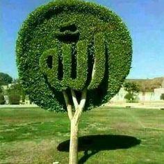 Subhan Allah 💚💚💚 Allah In Arabic, Kaligrafi Allah, Allah Wallpaper, Islamic Quotes Wallpaper, Allah Calligraphy, Islamic Art Calligraphy, Islamic Gifts, Islamic Dua, Islamic Images