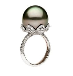 Couture diamond-faceted white and rose gold ring with Tahitian South Sea pearl Couture diamond-faceted white and rose gold ring with Tahitian South Sea pearl Gems Jewelry, Pearl Jewelry, Diamond Jewelry, Fine Jewelry, Pearl Stud Earrings, Pearl Ring, Women's Earrings, Pearl Diamond, Gold Ring