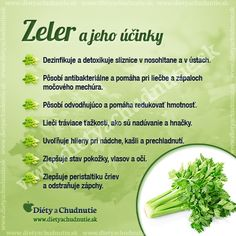 Zeler a jeho účinky na chudnutie a zdravie človeka Beauty Detox, Health And Beauty, Healthy Salads, Healthy Tips, Wellness, Natural Medicine, Natural Health, Natural Remedies, Diet Recipes