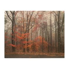 Forest in Autumn Wood Wall Art - wood gifts ideas diy cyo natural