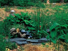 Create a DIY Garden Pond