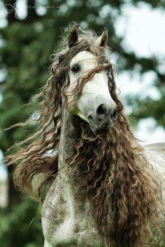 :) mejor ke mi cabello