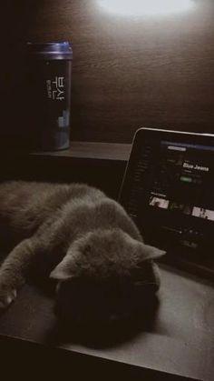 Music Video Song, Music Lyrics, Music Quotes, Music Songs, Music Videos, Night Aesthetic, Aesthetic Songs, Aesthetic Pictures, Music Mood