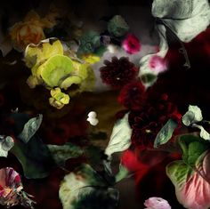 Isabelle Menin, This is Not About Flowers