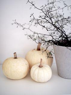 Siitä koska halloweeniä meillä Suomessa kuuluisi juhlia, vai kuuluisiko ollenkaan, on monia mielipiteitä. Halloween ei itselleni ol...