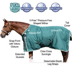 We love our StormShield® 1200D VTEK™ EVERGREEN Surcingle Turnouts! This blanket is designed for horses with prominent withers as well as older horses who are losing their top line. Blanket features a pressure free wither, Adjusta-Fit system, extended gussets, contour fit, tail cover and detachable elastic leg straps! Great blanket! Schneiders Saddlery.