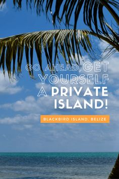 Private Tropical Island Getaway - Blackbird Island, Belize, St George's Caye Airbnb