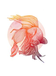 Beautiful red siamese fighting fish illustration. Item Details • This listing is for one unframed print, A3 (297mm x 420mm) size • High quality digital print on to clean white 250gsm matte card. • Frame not included. You can purchase a frame to fit these prints online, from a local framers • Custom sizes available on request, please contact us before purchase if you would like a custom size. Will be posted in an A3 Card backed envelope.