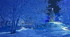Christmas in Anchorage, Alaska
