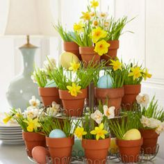 Love working with natural materials. Wheat grass in mini terra cotta pots with eggs and daffodils. Can use foil-wrapped chocolate eggs too or any colored candy & flower to switch-out for any holiday. I did this with Gerber Daisies once...so cute!