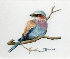 Lilac Breasted Roller Trish Burr embroidery pattern