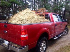 My Truck <3 <3 <3 Its obviously a farm truck :) xxx