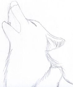 Basic Wolf Howling