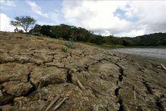 Panamá: Científicos aseguran que El Niño está disminuyendo su intensidad - http://verdenoticias.org/index.php/blog-noticias-medio-ambiente/144-panama-cientificos-aseguran-que-el-nino-esta-disminuyendo-su-intensidad