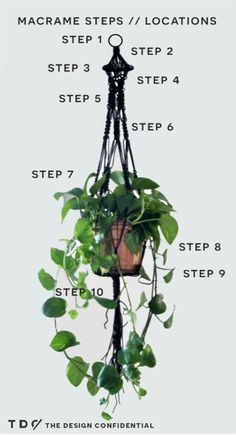 Easy DIY Macrame Hanging Planter | The Design Confidential