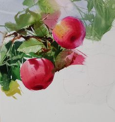 Watercolor Fruit, Watercolor And Ink, Watercolor Paintings, Oil Painting Techniques, Chinese Painting, Botanical Art, Botany, Flora, Berries