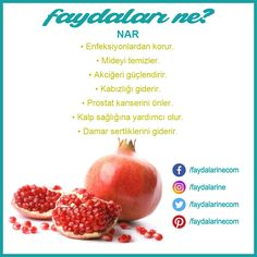Nar faydaları nelerdir Source by aysunfurkankaan Facial Treatment, Healthy Life, Healthy Snacks, Healthy Eating, Reflexology Massage, Diet And Nutrition, Viera, Fruits And Vegetables, Green Smoothies
