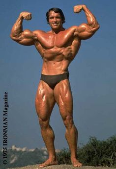 The Golden Age of bodybuilding made Arnold Schwarzenegger a global icon. This Q&A with some of the age's greatest bodybuilders takes you on a trip through time. Bodybuilding Training, Bodybuilding Motivation, Arnold Bodybuilding, Arnold Schwarzenegger Bodybuilding, Bodybuilding Workouts, Machine Fitness, 7 Workout, Pro Bodybuilders, Pumping Iron
