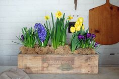 How to build a simple planter box.The perfect Easter centrepiece for $20. via @artofdoingstuff