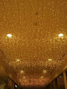 Ceiling Christmas lights                                                       …