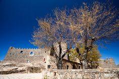 Vista frontal del castillo de Montánchez con un gran árbol delante. Montánchez, Extremadura