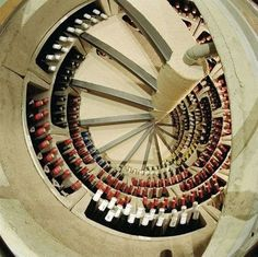 spiral staircase with wine storage