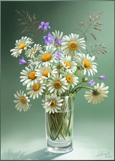 Daisies on Wacom Gallery Daisy Painting, Acrylic Painting Flowers, Simple Acrylic Paintings, Watercolor Paintings, Flowers In Jars, Container Flowers, Flower Line Drawings, Daisy Art, Indian Art Paintings