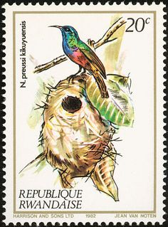 Northern Double-collared Sunbird stamps - mainly images - gallery format