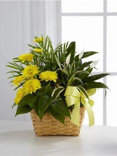 FuneralFlowers.com - Funeral Flowers, Sympathy Flowers, Memorial Flowers
